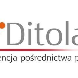 Oleksandr Ditola (OleksandrDitola), Warsaw, Sumy