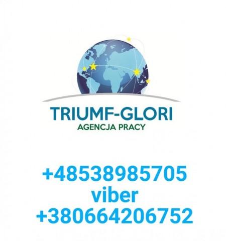 Triumf  (Triumf), Bydgoszcz, Sumy