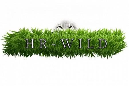 HR Wild HR Wild (HR Wild), Wrocław, Charkiw