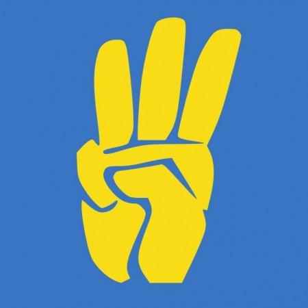 Всеукраїнське-Обєднання Свобода (Всеукраїнськ), Пшемысль, Вольногорск