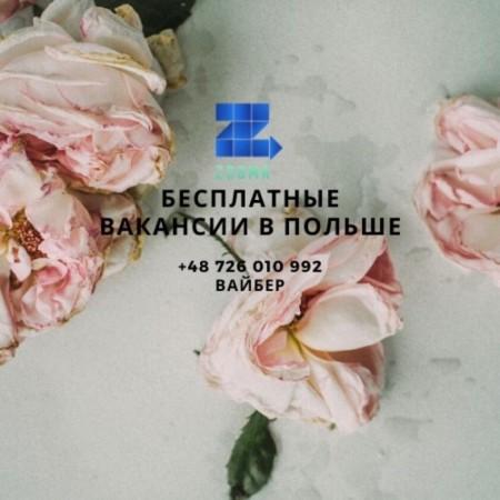 Anastasiia Sameliuk (Anastasiia Sameliuk), Вроцлав, Івано-Франківськ